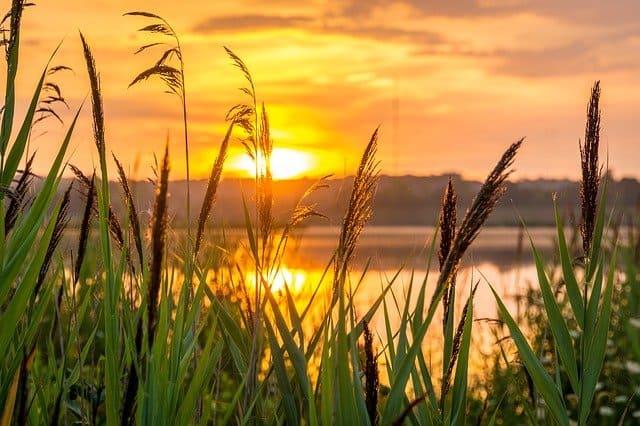 Spiritualität zeigt sich in der Natur