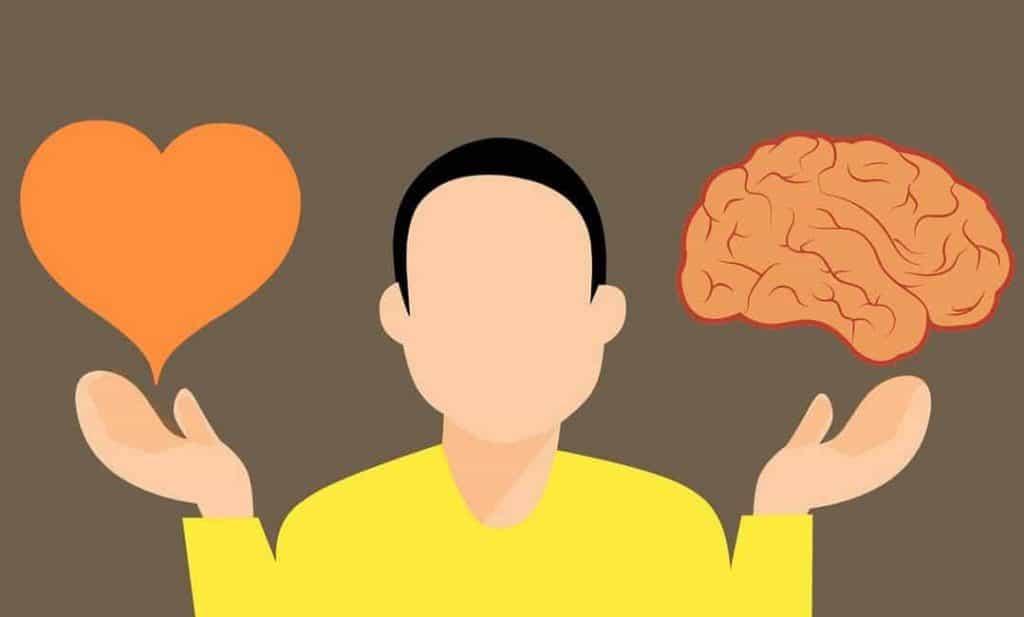 Intuitiv mit der Intuition oder rational mit dem Verstand entscheiden? Das Bild zeigt einen Kopf mit dem Herz (Sinnbild für Intuitionen) in der einen und dem Hirn (Sinnbild für den Verstand) in der anderen Hand vor einer Entscheidung.